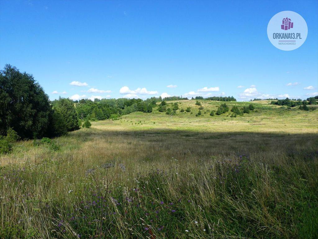 Działka rolna na sprzedaż Orzechowo, gmina Dobre Miasto  17399m2 Foto 2
