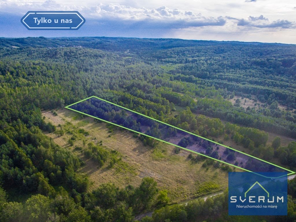 Działka leśna na sprzedaż Złoty Potok, Partyzantów  7420m2 Foto 2