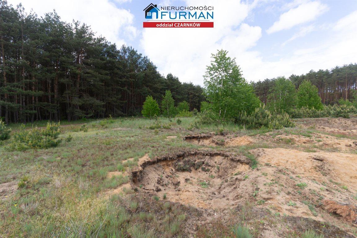 Działka rolna na sprzedaż Nowe Dwory  33639m2 Foto 10