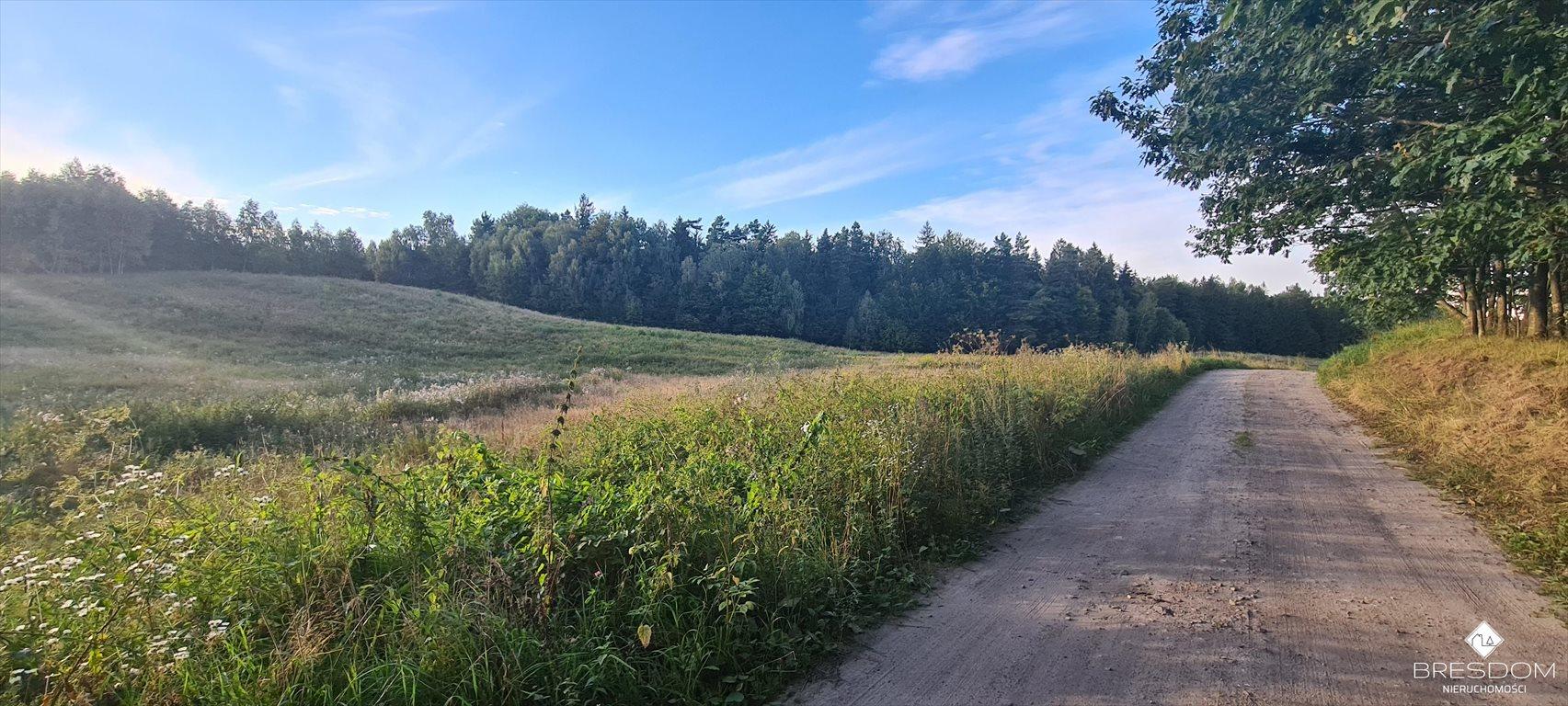 Działka rolna na sprzedaż Cerkiewnik  8467m2 Foto 1