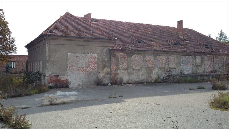 Lokal użytkowy na sprzedaż Grudziądz, Jagiellończyka  1200m2 Foto 4