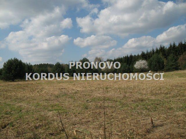 Działka rolna na sprzedaż Steklno  116500m2 Foto 5