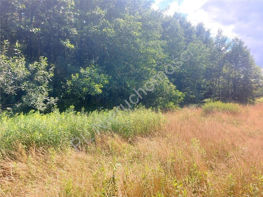 Działka rolna na sprzedaż Choiny  60500m2 Foto 2