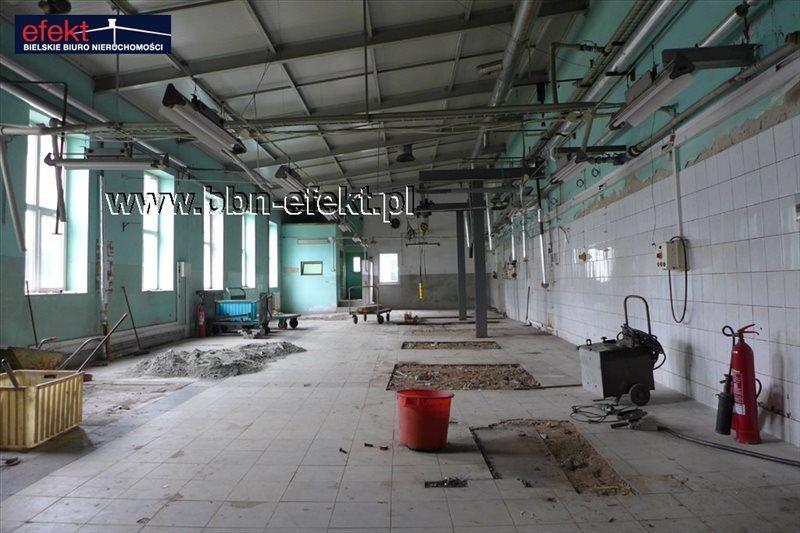 Lokal użytkowy na sprzedaż Bielsko-Biała, Centrum  3122m2 Foto 9