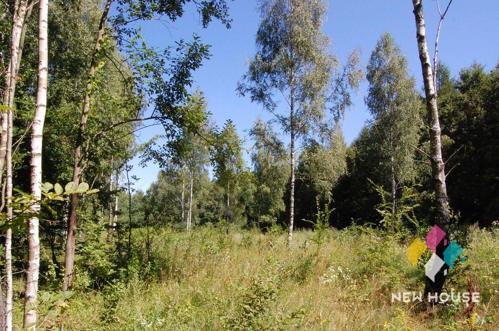 Działka rolna na sprzedaż Wojtkowizna  3400m2 Foto 3