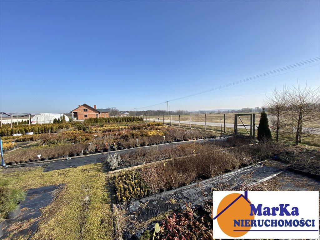 Działka budowlana na sprzedaż Nowe Kotlice  1200m2 Foto 3