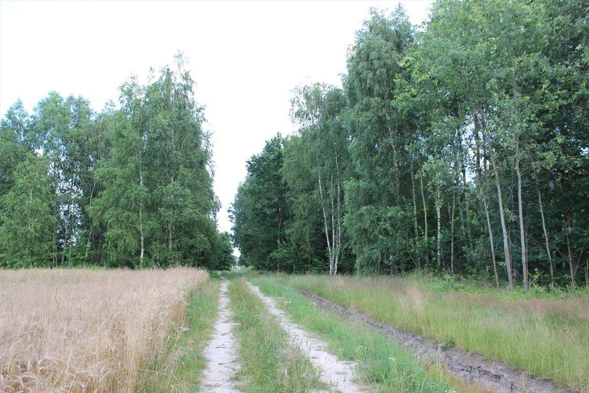 Działka rolna na sprzedaż Choszczówka Stojecka  20900m2 Foto 3