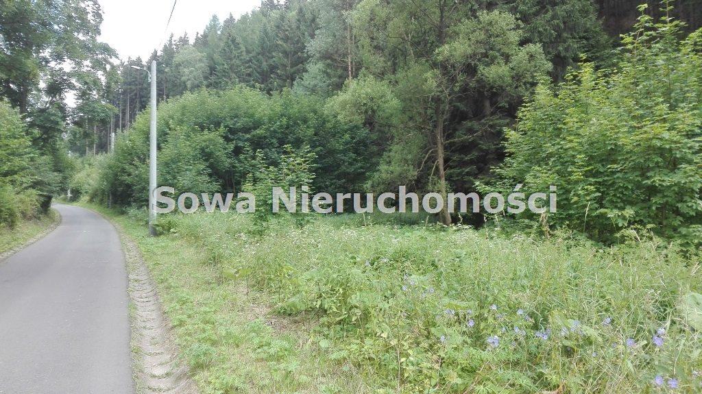 Działka inna na sprzedaż Mieroszów, okolice Mieroszowa  3900m2 Foto 3