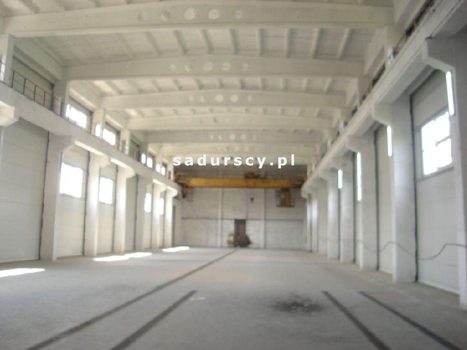 Lokal użytkowy na wynajem Nowy Targ  600m2 Foto 5
