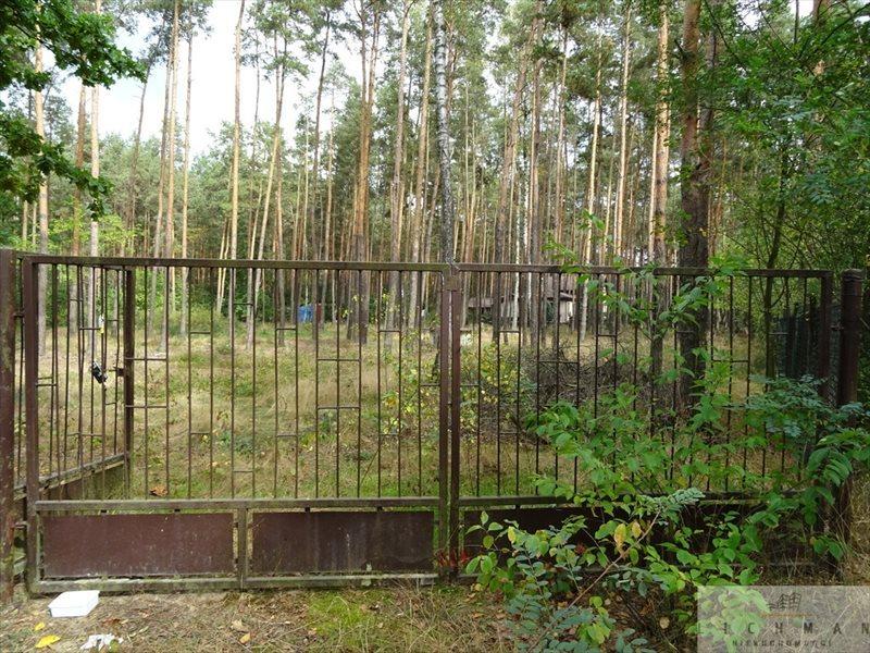 Działka leśna na sprzedaż Dziektarzew  2537m2 Foto 3