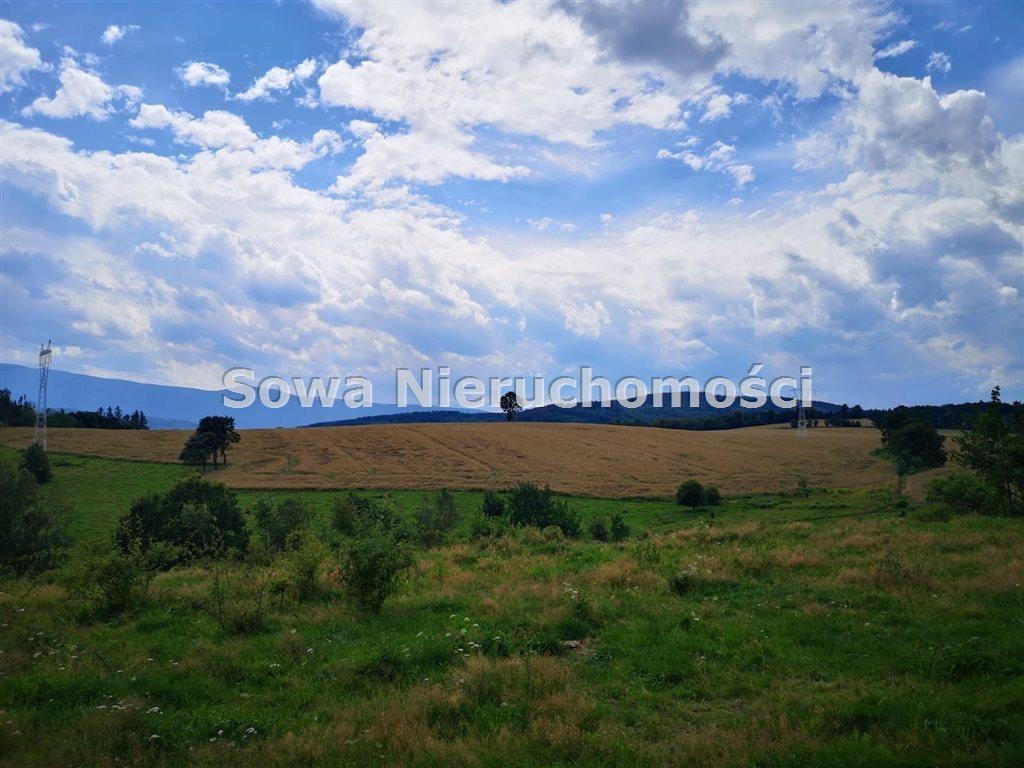 Działka budowlana na sprzedaż Wojcieszyce  11300m2 Foto 2