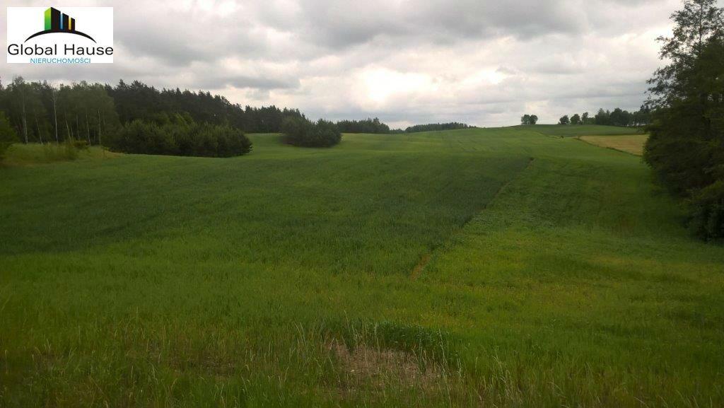 Działka rolna na sprzedaż Nowe Krzywe  3080m2 Foto 3