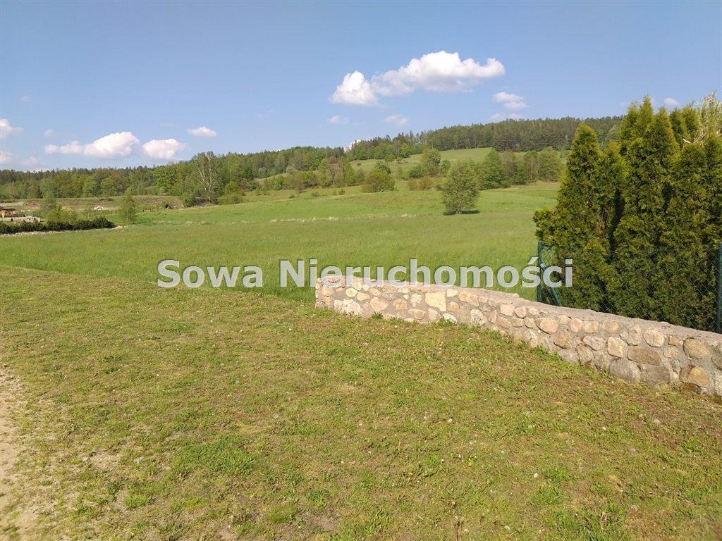 Działka inna na sprzedaż Sosnówka  6000m2 Foto 2