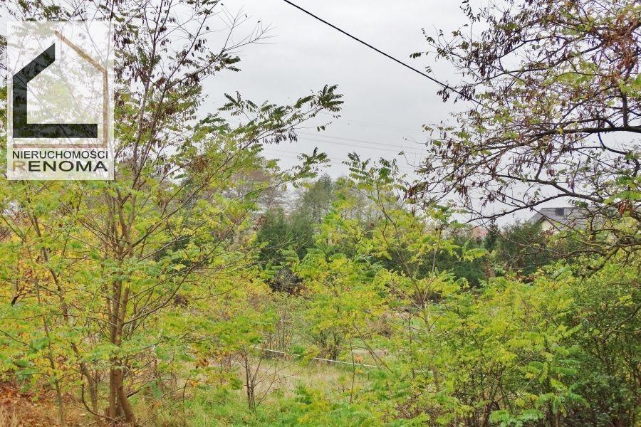 Działka budowlana na sprzedaż Wiry  3729m2 Foto 3