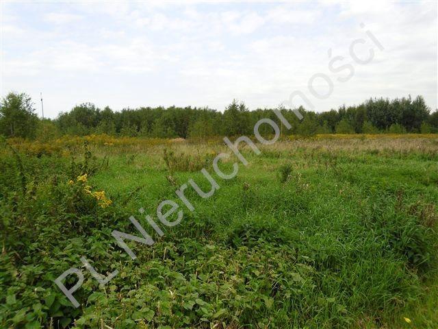Działka rolna na sprzedaż Olesin  9983m2 Foto 6