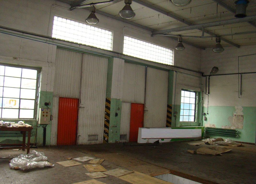 Lokal użytkowy na sprzedaż Nowa Sól, Centrum, ul. Szeroka  563m2 Foto 11