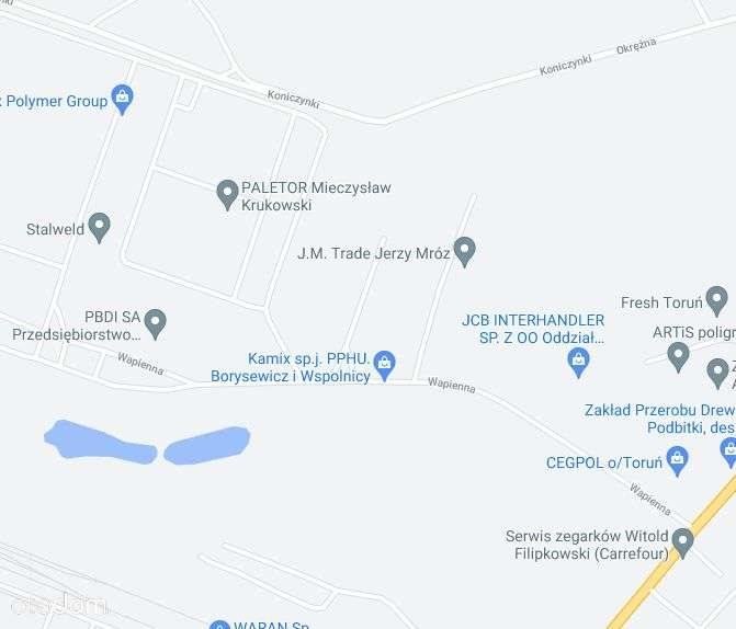 Działka inwestycyjna na sprzedaż Toruń, Wapienna  5221m2 Foto 3