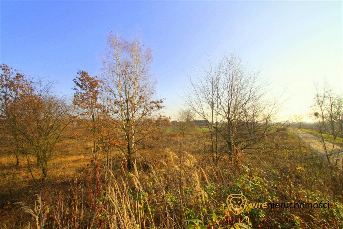 Działka rolna na sprzedaż Kotowice, Podwalna  11000m2 Foto 1