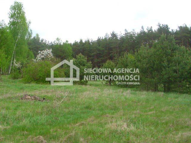 Działka siedliskowa na sprzedaż Miedzno  4564m2 Foto 10