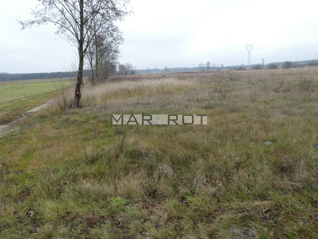 Działka budowlana na sprzedaż Zawiszyn  10000m2 Foto 1