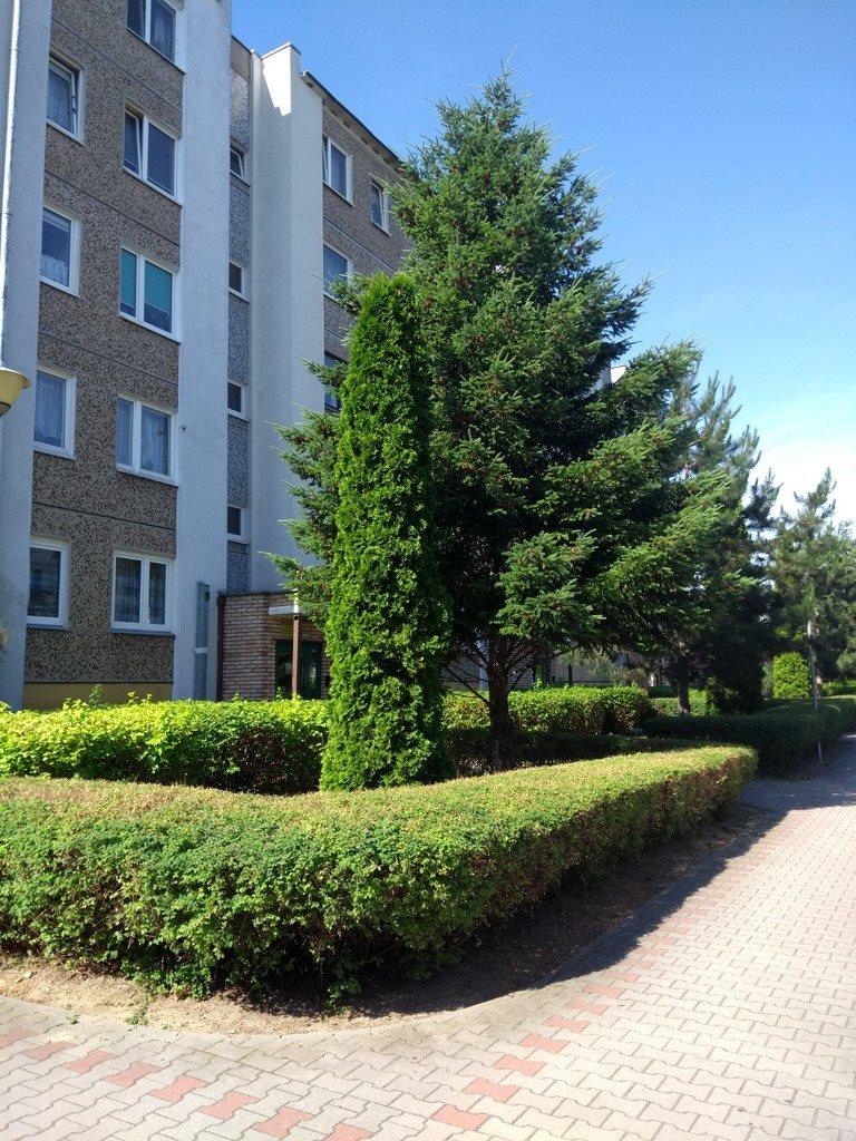 Mieszkanie dwupokojowe na sprzedaż Poznań, os. Stefana Batorego  54m2 Foto 8