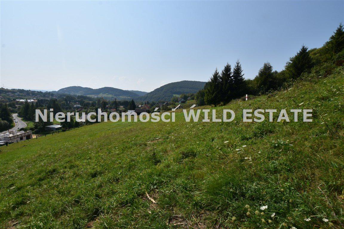 Działka rolna na sprzedaż Solina, Bóbrka  4389m2 Foto 2