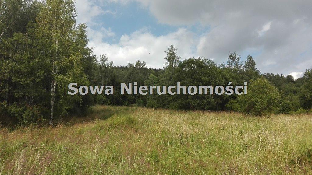 Działka inna na sprzedaż Mieroszów, okolice Mieroszowa  14209m2 Foto 7