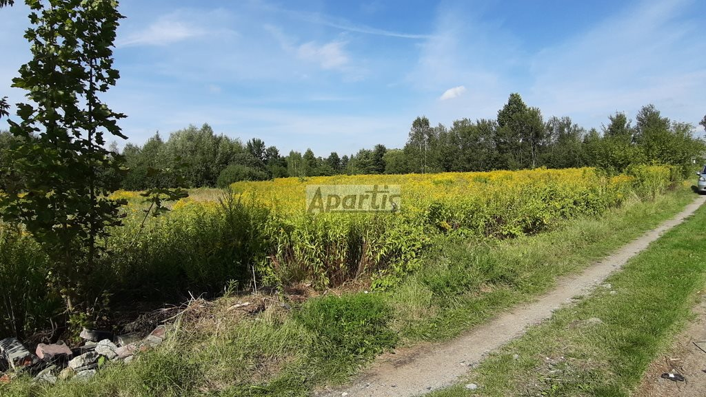 Działka rolna na sprzedaż Budziska  8229m2 Foto 6