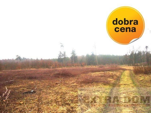 Działka budowlana na sprzedaż Nowogard  665m2 Foto 1