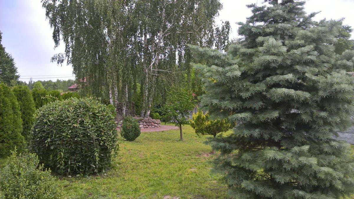 Lokal użytkowy na sprzedaż Radzymin, Dąbrówka  1000m2 Foto 5