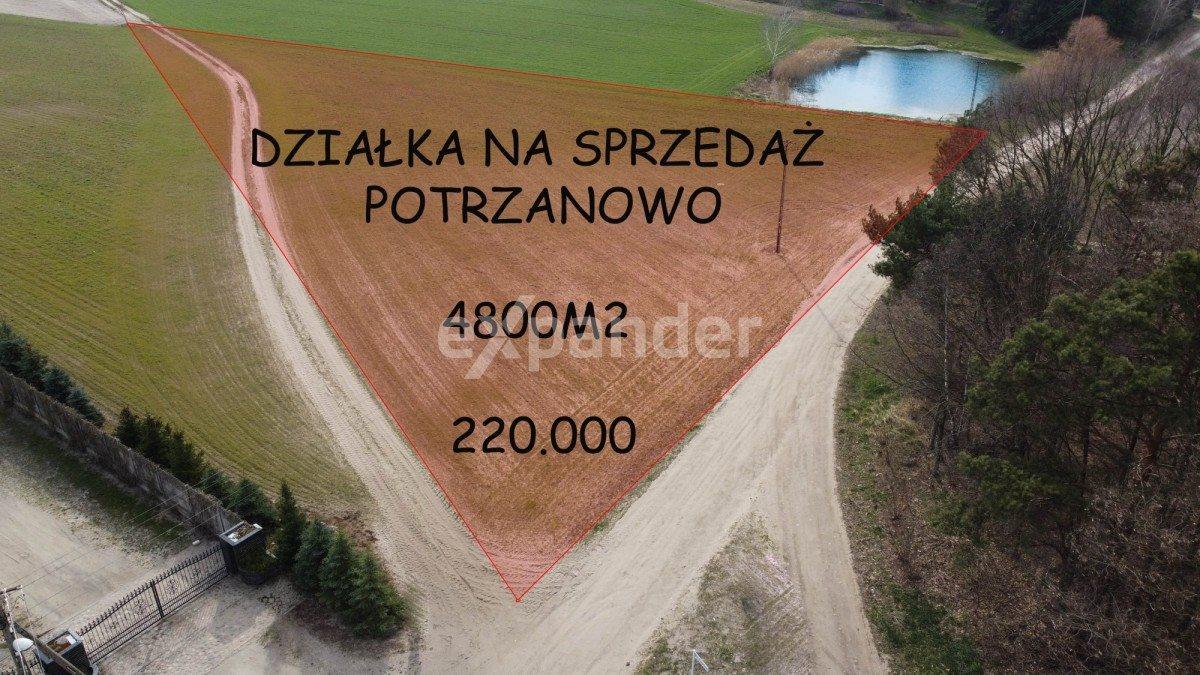 Działka rolna na sprzedaż Potrzanowo  4800m2 Foto 1