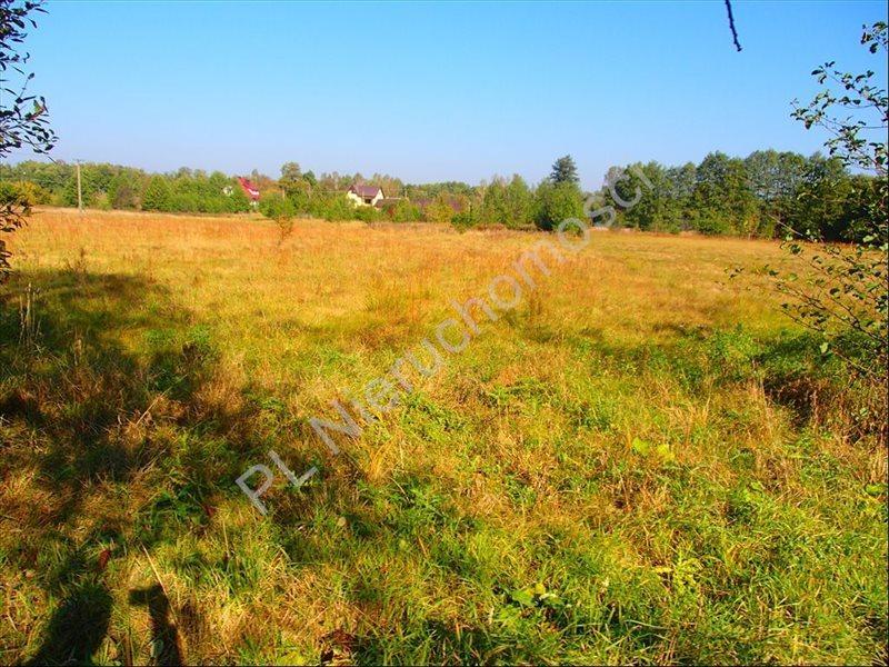 Działka rolna na sprzedaż Stanisławów  12800m2 Foto 11