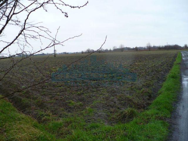 Działka rolna na sprzedaż Błonie  10000m2 Foto 1