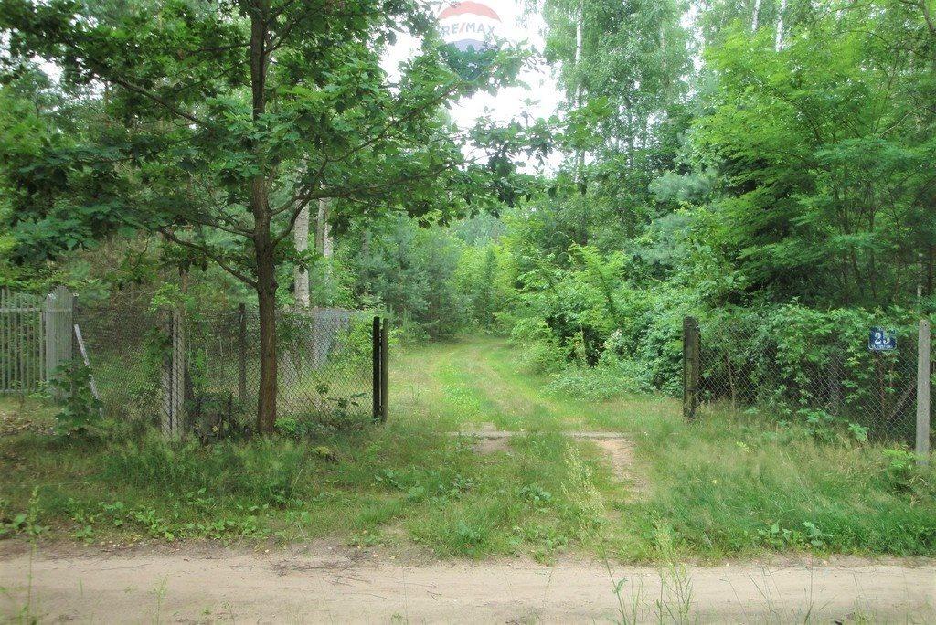 Działka rekreacyjna na sprzedaż Lasek, Sosnowa  5307m2 Foto 12