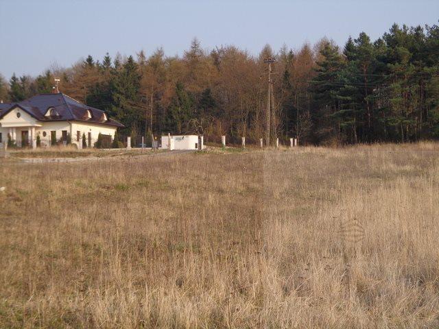 Działka budowlana na sprzedaż Nowa Dąbrowa  1005m2 Foto 3