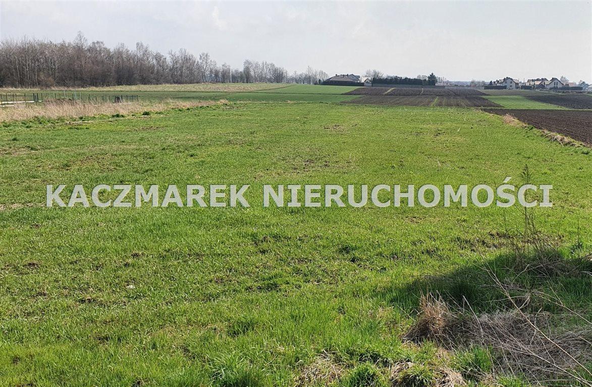 Działka budowlana na sprzedaż Jankowice, Żubrów  5273m2 Foto 1