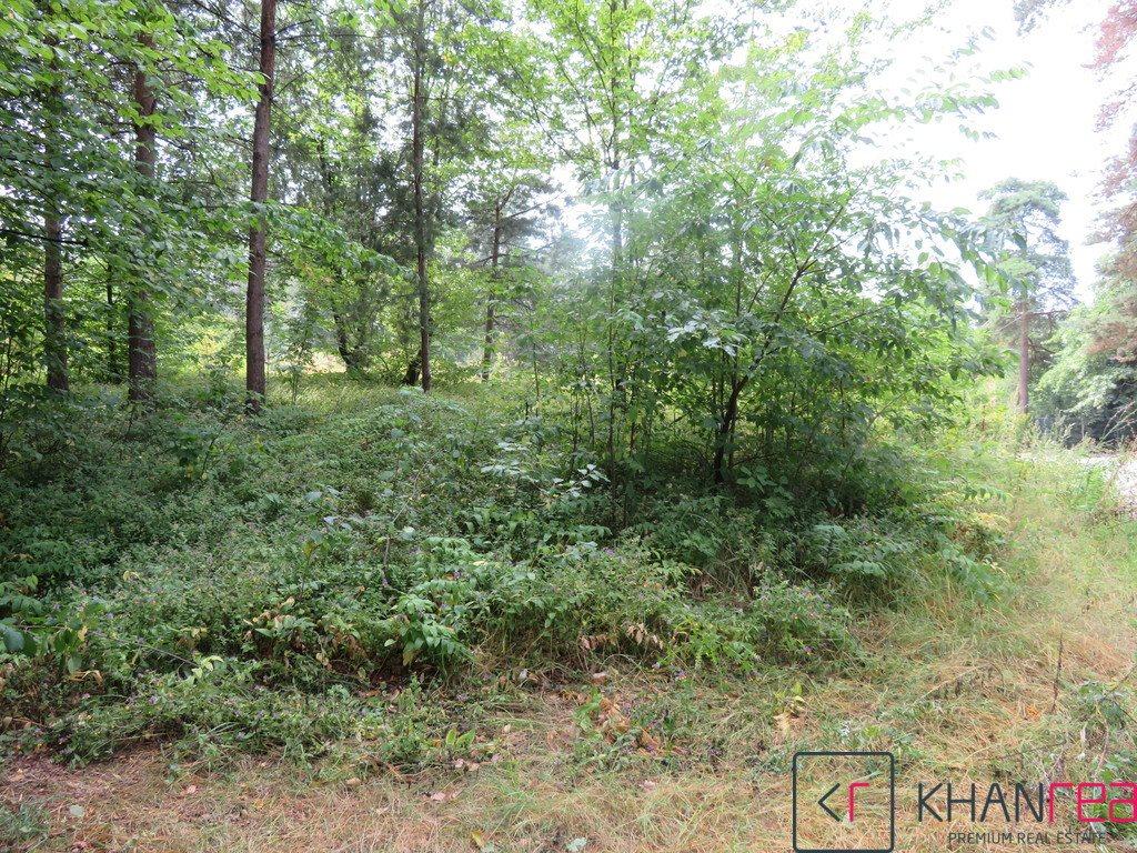 Działka leśna na sprzedaż Sobików  1200m2 Foto 3