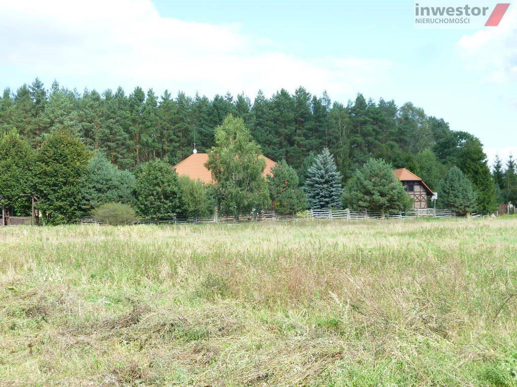 Działka budowlana na sprzedaż Wołczkowo  3000m2 Foto 1