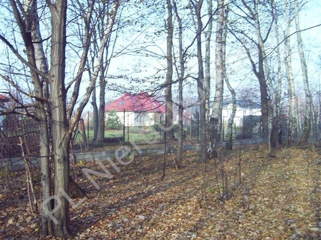 Działka budowlana na sprzedaż Opypy  6631m2 Foto 6