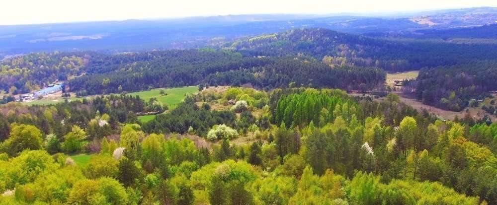 Działka rolna na sprzedaż Krzywopłoty  51135m2 Foto 6