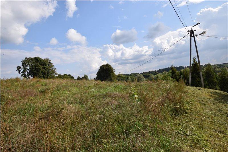 Działka rolna na sprzedaż Bukwałd, Bukwałd, Bukwałd  4800m2 Foto 4