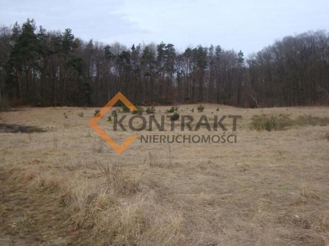 Działka rolna na sprzedaż Przęsocin  3005m2 Foto 2
