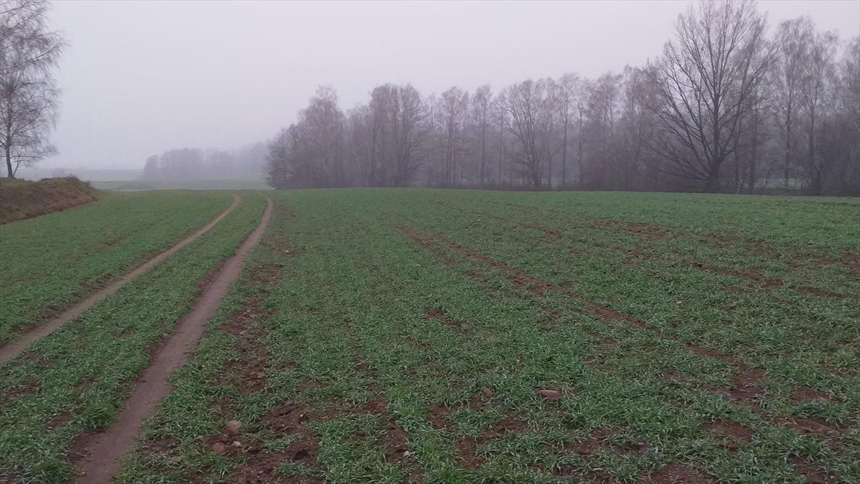 Działka gospodarstwo rolne na sprzedaż Klucznik  7000000m2 Foto 5
