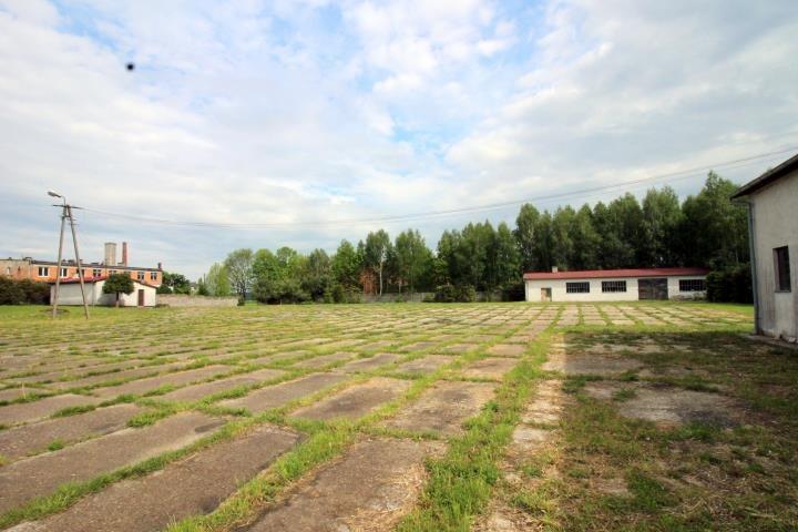 Lokal użytkowy na sprzedaż Olszewo  1592m2 Foto 5