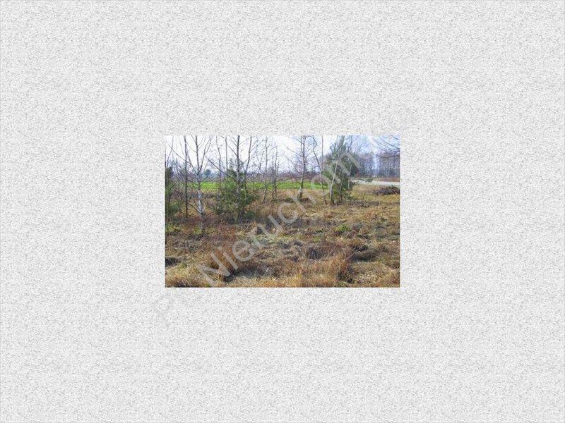 Działka rolna na sprzedaż Stanisławów  11100m2 Foto 3