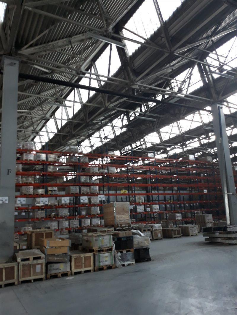 Lokal użytkowy na wynajem Hala - MAGAZYN - produkcja. 3648 m2 - RZESZÓW  3648m2 Foto 2