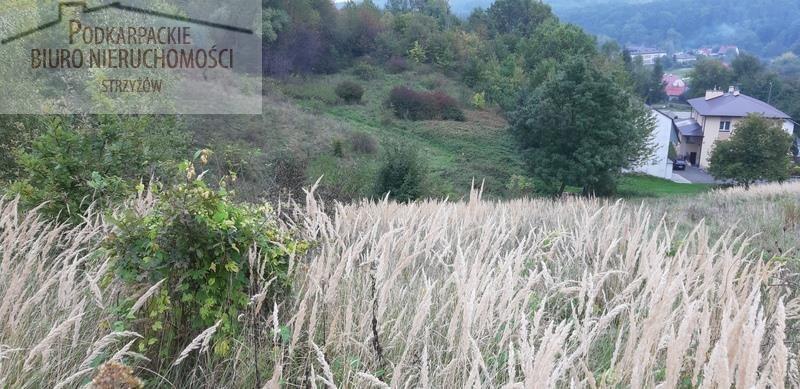 Działka rolna na sprzedaż Babica  4300m2 Foto 3