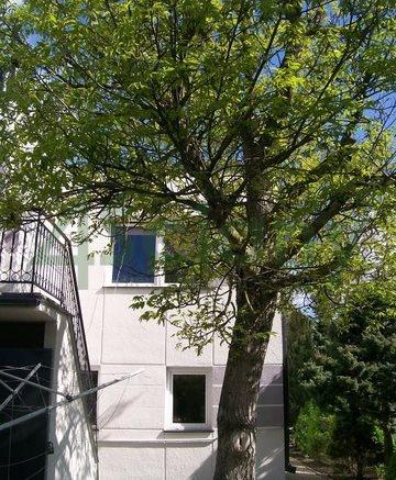 Dom na sprzedaż Ożarów Mazowiecki  160m2 Foto 7