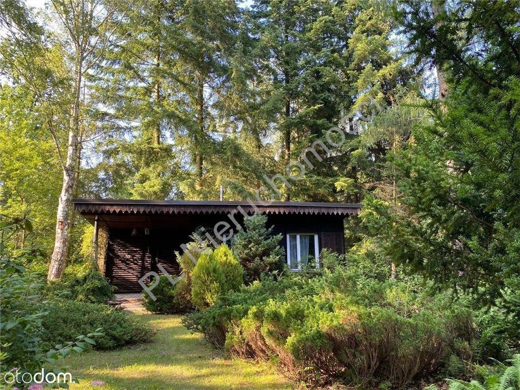 Dom na sprzedaż Adamów-Wieś  3000m2 Foto 1