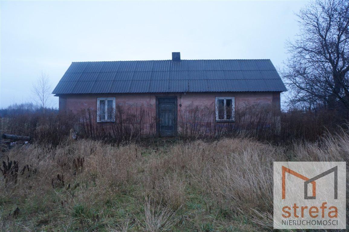 Działka siedliskowa na sprzedaż Majdan Krasieniński  3000m2 Foto 2